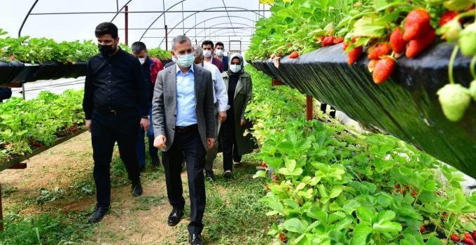 Tarım Belediyeciliğinde Markalaşma Hedefimize Doğru Sağlam Adımlar Atıyoruz