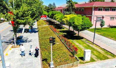 Malatya Parklarını Yazlık Çiçekler Süslüyor